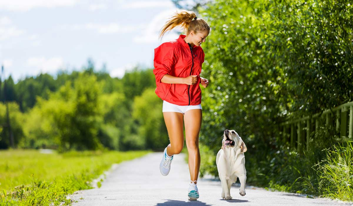 8 Sports Your Dog Can Play