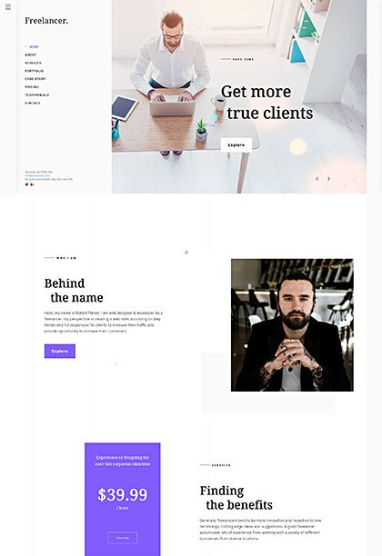 Freelancer Demo - Premium WordPress Theme