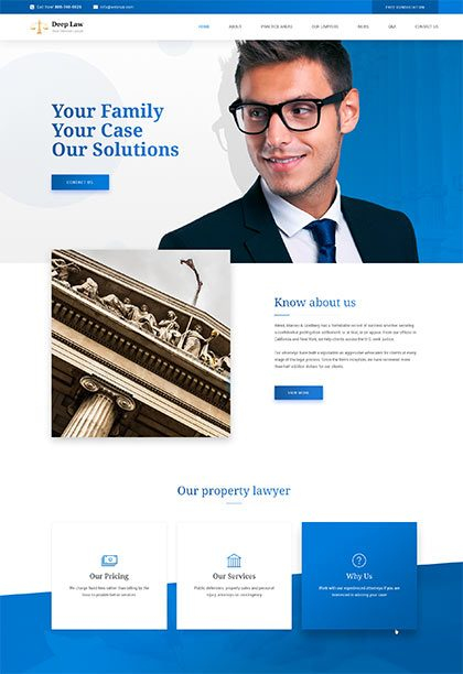 Lawyer Demo - Premium WordPress Theme