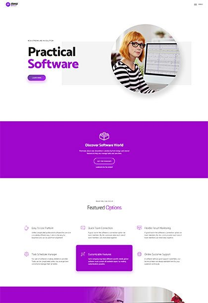 Software Demo - Premium WordPress Theme