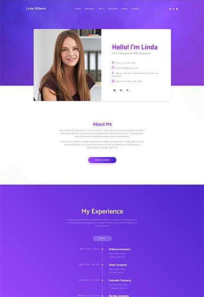 CV Demo - Premium WordPress Theme